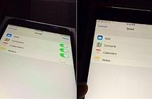 Người dùng than phiền chất lượng màn hình iPhone 6s chính hãng
