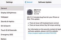 """Apple cập nhật iOS 11.1.1, sửa lỗi """"i thành A?"""" và lỗi Siri không hoạt động"""