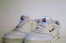 Điểm qua một vài sản phẩm vô danh của Apple