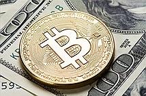 Nhà đầu tư Bitcoin kiện Huobi vì bị lỗ 400.000 Nhân dân tệ