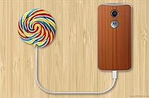 Điện thoại Moto X sắp được lên đời Android 5.0 Lollipop