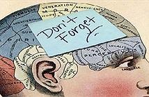 11 điều bất thường thú vị về trí nhớ mà mọi người nên biết