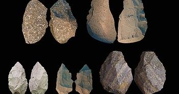 Những phát hiện mới về người cổ đại Homo Erectus
