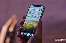 Apple bắt đầu chán chường với iPhone 12 mini