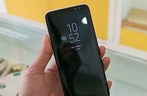 Apple, Google đang ăn theo thiết kế smartphone của Samsung?