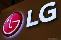LG sẽ không sản xuất Google Pixel 3
