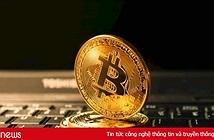 Nhà đầu tư nổi tiếng phố Wall, Novogratz khuyên nên mua tiền mật mã