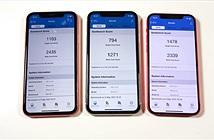 iPhone XR mạnh hơn đàn em ở bản cập nhật iOS 14.5.1