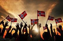 Na Uy là quốc gia đầu tiên cấm mọi hoạt động phá rừng