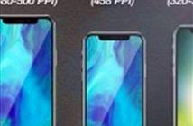 Apple cắt giảm 20% đơn hàng linh kiện sản xuất iPhone