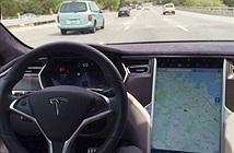Tesla bị ngăn hào, rào ngõ ở Đức