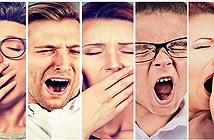 Ngáp chính là một trong những bí ẩn lớn nhất của con người