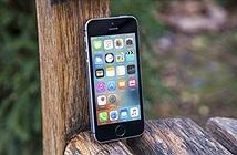 Apple chuẩn bị giảm sản lượng iPhone X và SE