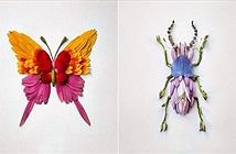 """Giật mình """"xuất thân"""" của những côn trùng đẹp tuyệt mỹ"""