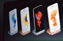 Cổ phiếu Apple lại giảm mạnh sau khi iPhone 6s ra mắt
