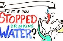 Bạn có thể sống thiếu nước bao lâu?