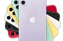 Đã có giá iPhone 11 dự kiến tại Việt Nam, từ 21,99 triệu đồng