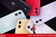 Về Việt Nam, iPhone 11 mới sẽ có giá dự kiến từ 21,99 triệu đồng