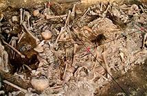 Hố chôn ghê rợn hé lộ màn thảm sát của đội quân Mông Cổ khi tấn công châu Âu