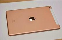 iPad 10.2 inch ra mắt: Dùng được bút Apple Pencil, giá 329 USD