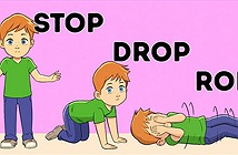 10 kỹ năng sinh tồn cho trẻ
