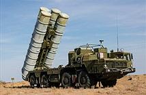 S-300PM Syria đứng đâu trong đại gia đình rồng lửa S-300 (kỳ 1)