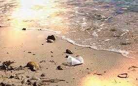 Ánh sáng Mặt trời giúp phân hủy nhựa