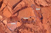 Tìm thấy hóa thạch trong mỏ kim cương