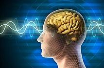 Mỹ tiết lộ siêu chiến binh biết đọc trí não người