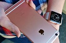 iPhone thế hệ tiếp theo sẽ vẫn trung thành với màn hình LCD