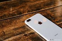 iPhone 8 Plus là chiếc iPhone Plus đầu tiên bán chạy hơn phiên bản thường