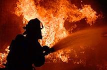 Lính cứu hỏa bị bắt vì tội lỗi kỳ lạ, chẳng ai ngờ