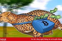 Blockchain Dair: Phí giao dịch Bitcoin đang ở mức thấp kỉ lục