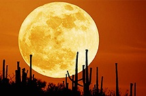 Chuẩn bị đi: Siêu trăng tuyết - Mặt trăng to, đẹp và sáng nhất năm sẽ diễn ra ngay đêm nay
