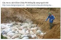 Tung tin đồn sai lệch về dịch tả lợn Châu Phi, đối diện án phạt 20 triệu đồng