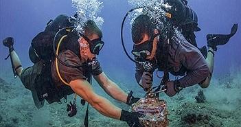 Đố bạn biết vì sao cáp quang Internet lại được đặt dưới đáy biển?