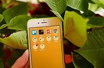 Hướng dẫn biến folder trên iPhone từ hình vuông sang hình tròn trong 30 giây