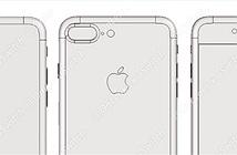 Rò rỉ bản vẽ iPhone 7, chỉ có dòng 7 Pro (hoặc 7 Plus) mới có camera kép