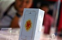 Mở hộp iPhone SE chính hãng tại Việt Nam, giá từ 11,5 triệu đồng