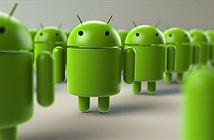 Người dùng iOS và Windows Phone đang về với đội Android