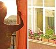 8 cách đơn giản giúp nhà mát hơn trong mùa hè
