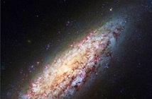 Phát hiện thiên hà cô đơn nhất vũ trụ