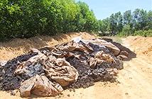 Hơn 100 tấn chất thải của Formosa được chôn trong trang trại
