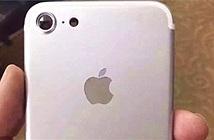 iPhone 7 lạc hậu nhưng vẫn sẽ bán chạy