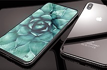 Không xử lý được công nghệ vân tay, iPhone 8 có thể hoãn ra mắt