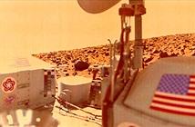 NASA có thể từng tự hủy bằng chứng về chất hữu cơ trên sao Hỏa