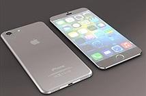 Cuộc chiến iPhone chính hãng tại Việt Nam có thêm tân binh mới