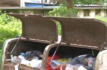 Chuyện lạ hôm nay: Bé gái bị vứt vào thùng rác và sự thật kinh hoàng