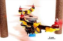 Drone tự biến hình để tránh chướng ngại vật
