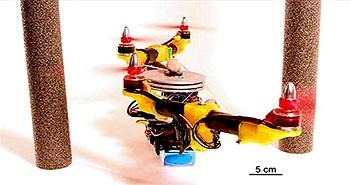"""Drone tự """"biến hình"""" để tránh chướng ngại vật"""